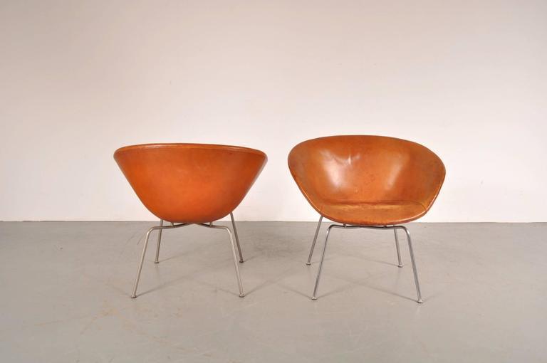 Pair of Pot Chairs by Arne Jacobsen for Fritz Hansen, Denmark, circa 1950 4