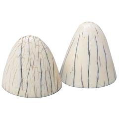 Art Deco Tip of Walrus Tusks Salt and Pepper Shakers