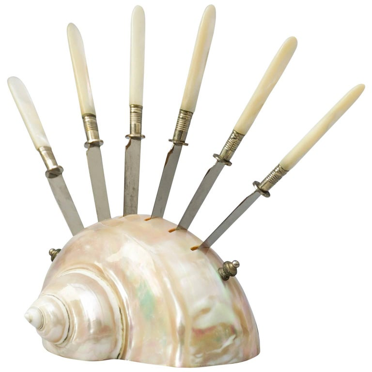 Rare Set of Six Fruit Knives in a Large Polished 'Turbo Marmoratus' Seashell