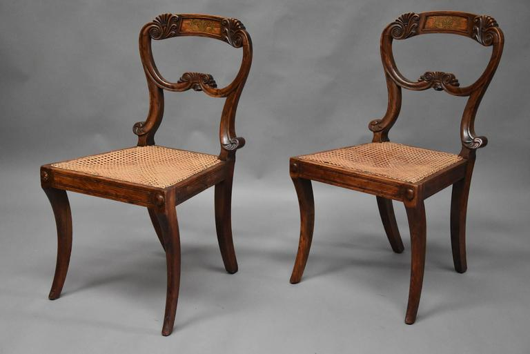 An elegant pair of beech early 19th century simulated rosewood Regency chairs in the manner of Gillows.