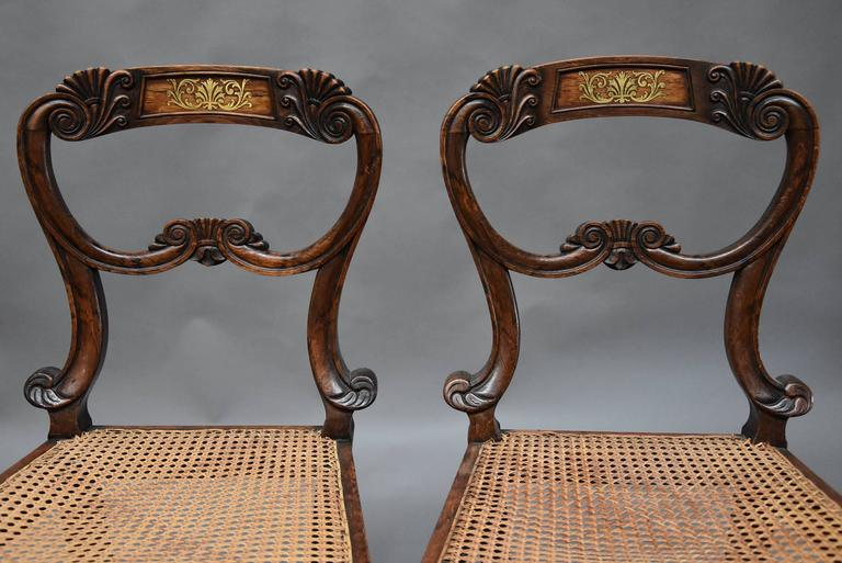English Pair of 19th Century Simulated Rosewood Regency Chairs in the Manner of Gillows For Sale