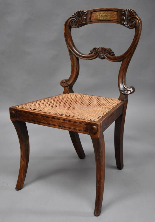 Pair of 19th Century Simulated Rosewood Regency Chairs in the Manner of Gillows In Good Condition For Sale In Suffolk, GB