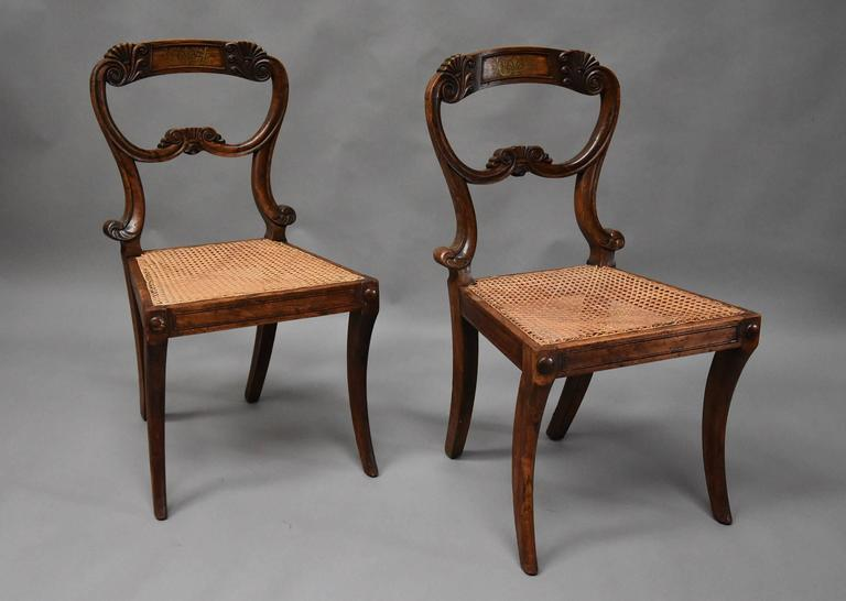 Pair of 19th Century Simulated Rosewood Regency Chairs in the Manner of Gillows For Sale 2