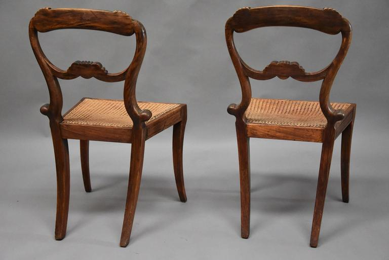Pair of 19th Century Simulated Rosewood Regency Chairs in the Manner of Gillows For Sale 5