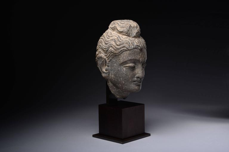 Gandharan Schist Stone Head of Buddha, 250 AD In Excellent Condition For Sale In London, GB