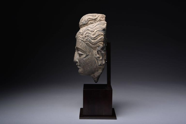18th Century and Earlier Gandharan Schist Stone Head of Buddha, 250 AD For Sale