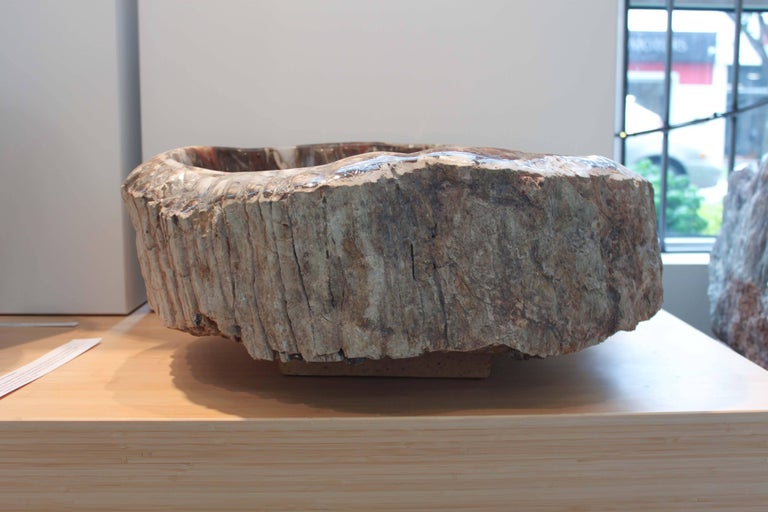 Petrified wood bowl from madagascar for sale at stdibs