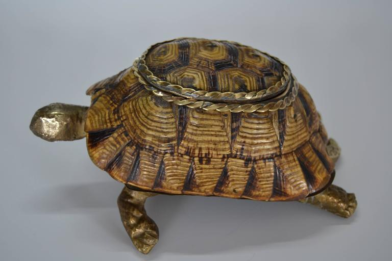Brass 1970s Turtle Shell and Bronze Box For Sale