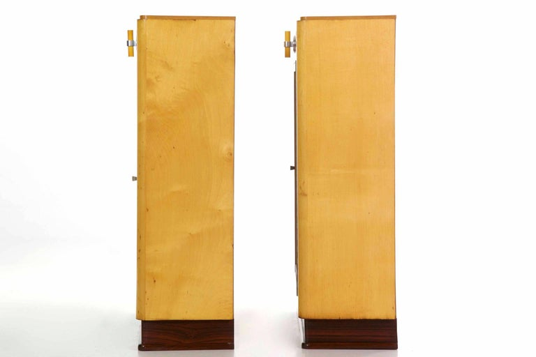 European Art Deco Pair of Birch and Rosewood Bookcase Cabinets, circa 1930 For Sale