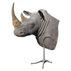 Massive Authentic Taxidermy Mounted White Rhino Bust