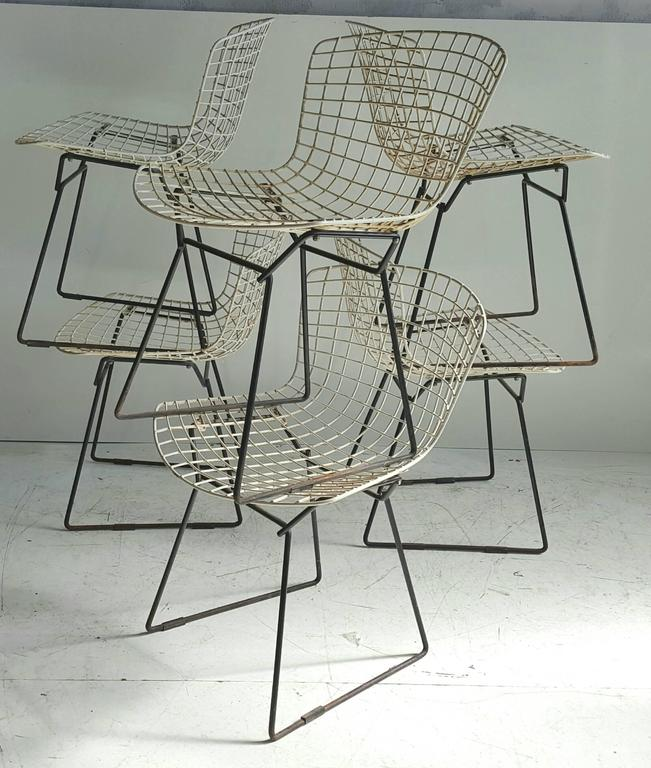 Classic Modernist Wire Bertoia Six Side Chairs Harry Bertoia for Knoll 2