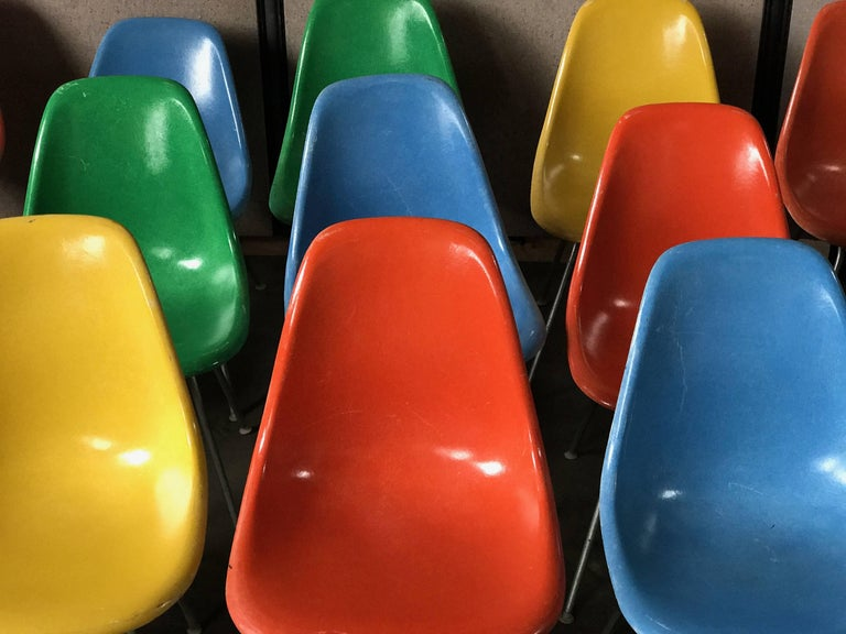 Mid-Century Modern Set of 18 Charles and Ray Eames Fiberglass Scoop Shell Chairs DSX Herman Miller For Sale