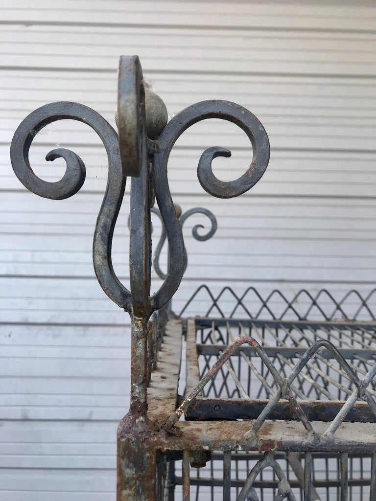 French Monumental Victorian Style Antique Brass, Painted Bird Iron Bird Cage For Sale