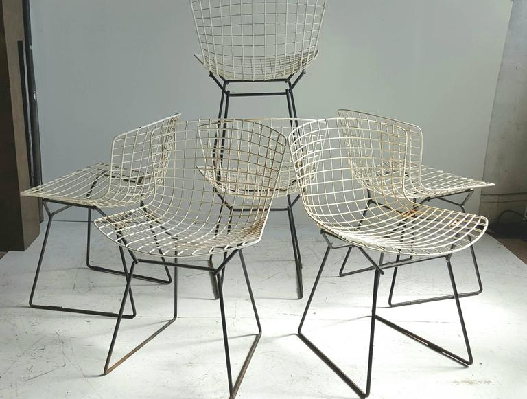 Classic Modernist Wire Bertoia Six Side Chairs Harry Bertoia for Knoll 3
