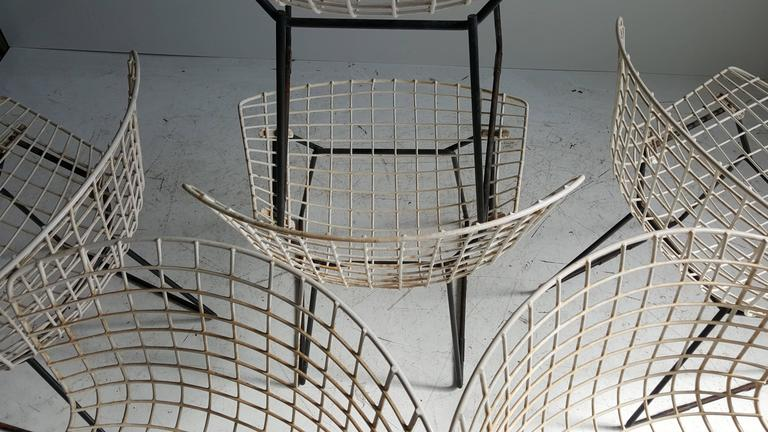 Classic Modernist Wire Bertoia Six Side Chairs Harry Bertoia for Knoll 6