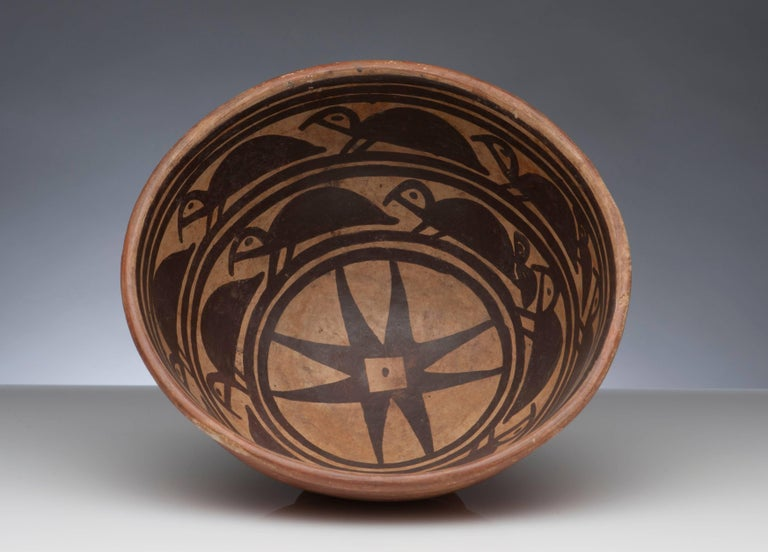 18th Century and Earlier Pre-Columbian Narino Turtle Pottery Bowl For Sale
