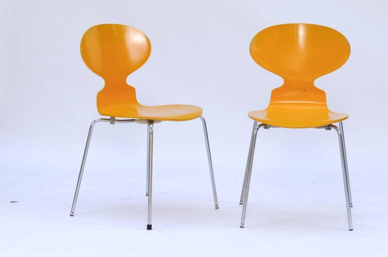 Mid-Century Modern Set of Four 1970s Arne Jacobsen Danish 'Fourmi' Side Chairs with Sunny Color For Sale