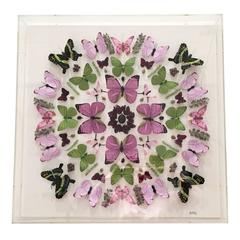 """Alicia Kowalski Collage in Lucite """"A-Wreatha"""" Butterflies in Pink, Green & Black"""