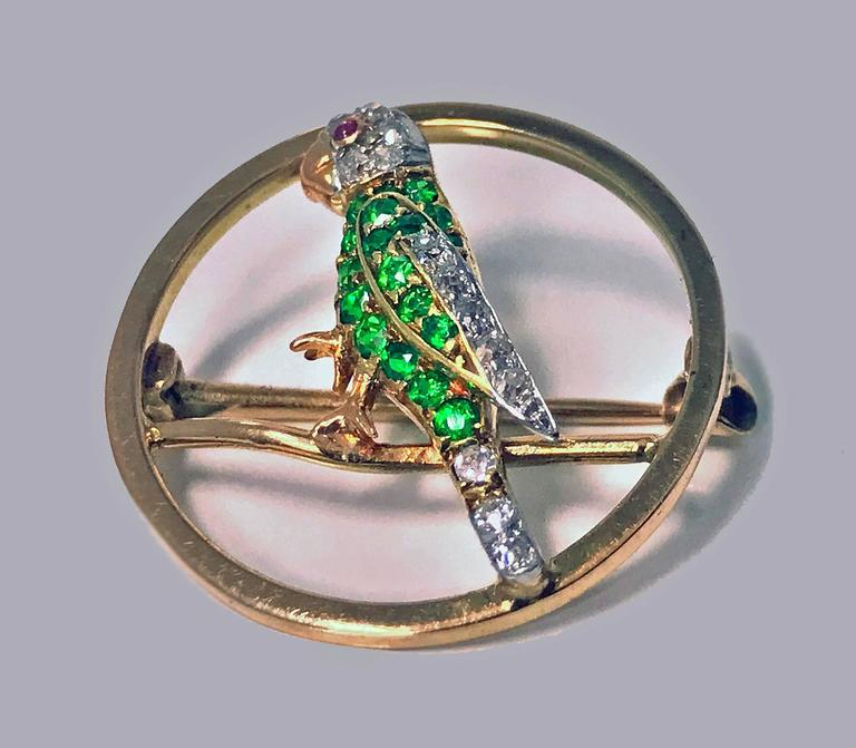 20th Century Demantoid, Diamond and Ruby Parrot Pin, circa 1920 For Sale