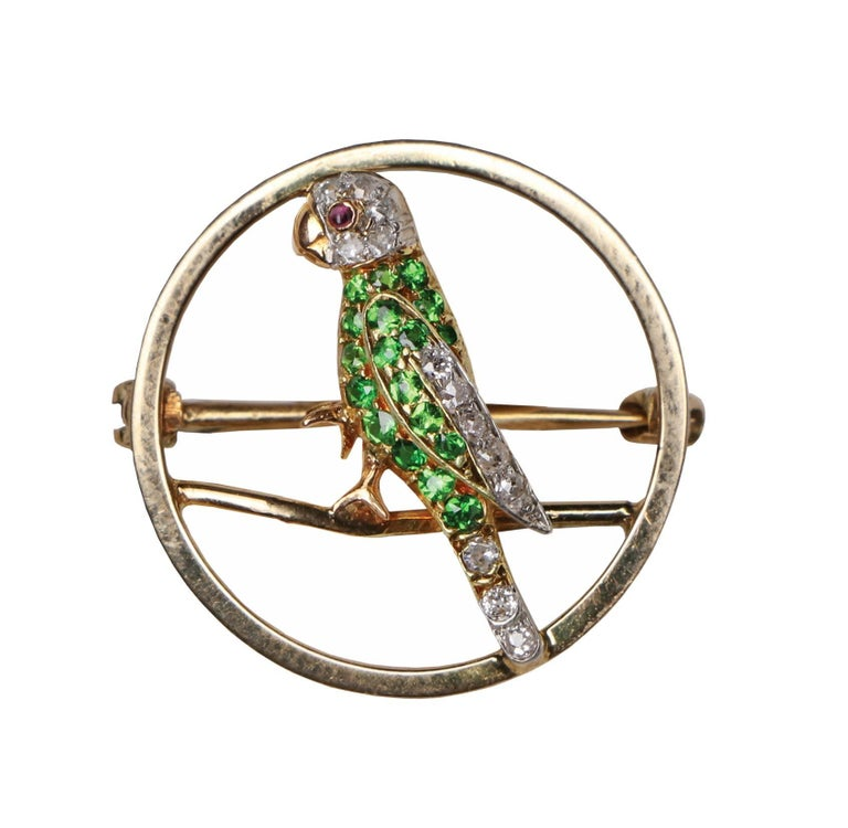 Demantoid, diamond and ruby parrot pin, circa 1920. The open gold circular pin depicting a parrot; the body set with 18 small round facetted demantoid with five small old round cut diamonds, the head and tail with a further eight small old round cut