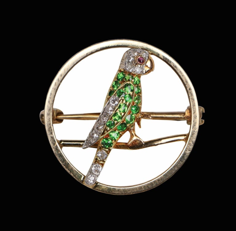 Gold Demantoid, Diamond and Ruby Parrot Pin, circa 1920 For Sale