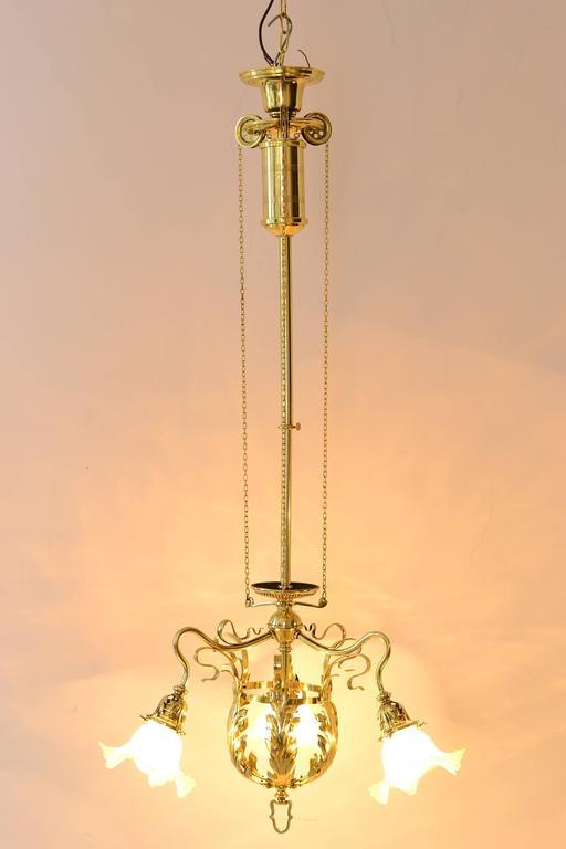 Adjustable Jugendstil Flowers Chandelier with Palme König Glass Shades For Sale 1