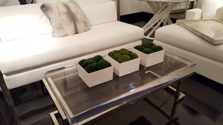 Botanical in Glossy White Square Planter In Excellent Condition For Sale In New York, NY