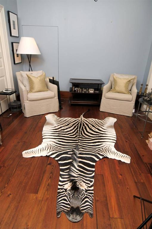 Authentic Zebra Skin Rug At 1stdibs