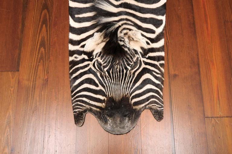 Authentic Zebra Skin Rug 4