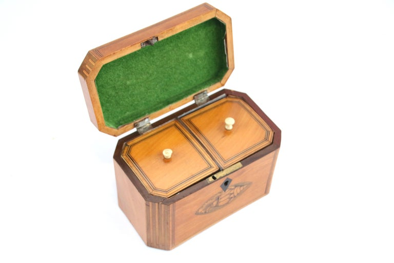 British Late 18th Century Octagonal Tea Caddy with Conch Shell Inlay For Sale