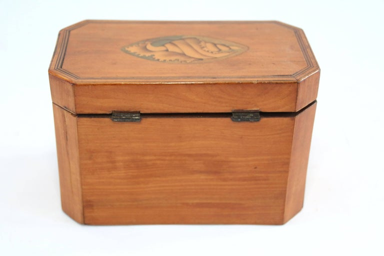 Late 18th Century Octagonal Tea Caddy with Conch Shell Inlay For Sale 4