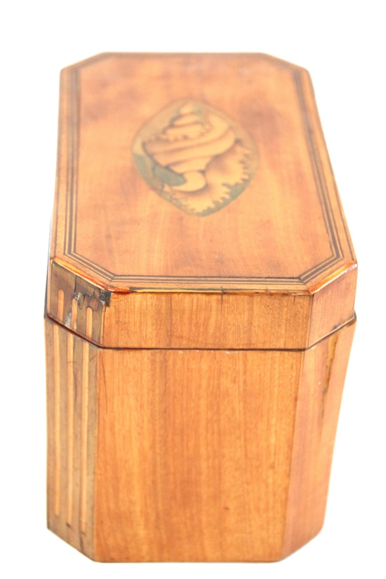 Late 18th Century Octagonal Tea Caddy with Conch Shell Inlay For Sale 2