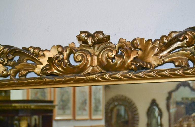 Marvelous pair of 19th century Italian Florentine gold gilded frame mirrors. Having exceptionally caved frames in acanthus leaf motif, and exhibiting a beautiful lustrous finish.