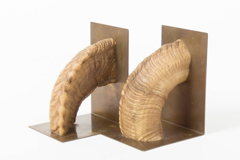 Mid-Century Modern Pair of Auböck, Midcentury Brass and Horn Bookends For Sale