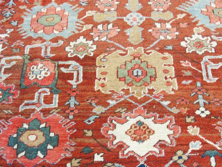 Unusual Serapi Carpet In Excellent Condition For Sale In Evanston, IL