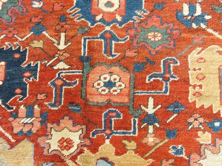 Wool Unusual Serapi Carpet For Sale