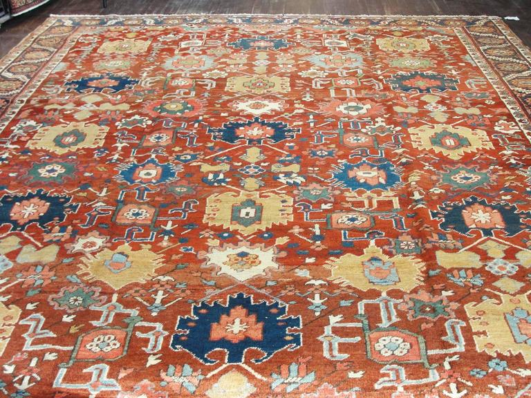 Unusual Serapi Carpet For Sale 1
