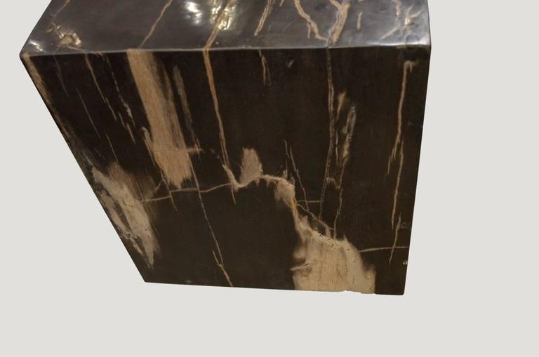 Indonesian Andrianna Shamaris Petrified Wood Side Table For Sale