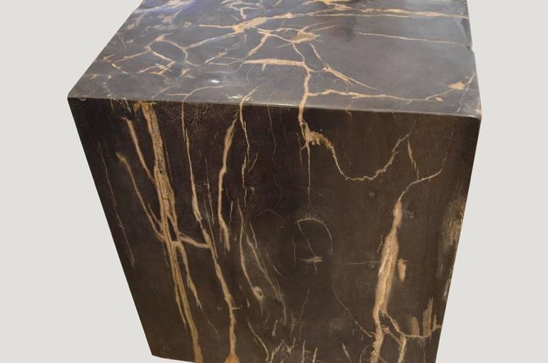 Andrianna Shamaris Petrified Wood Side Table For Sale 1