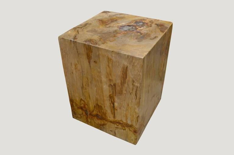 We source the highest quality petrified wood available. Each piece is hand selected and highly polished with minimal cracks. Petrified wood is extremely versatile, even great inside a bathroom shower. Perfect as a cocktail table, side table or
