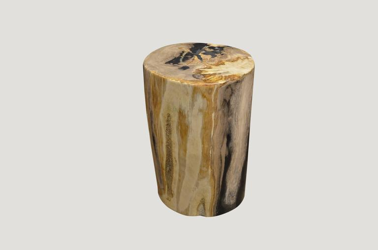 Contrasting color tones on this super smooth petrified wood side table. We only select the best.  We source the highest quality petrified wood available. Each piece is hand-selected and highly polished with minimal cracks. Petrified wood is