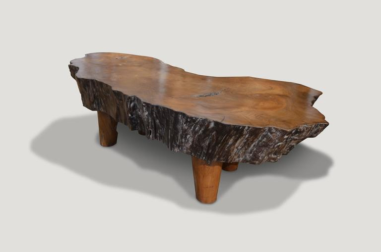 Mid Century Organic Teak Wood Coffee Table For Sale At 1stdibs