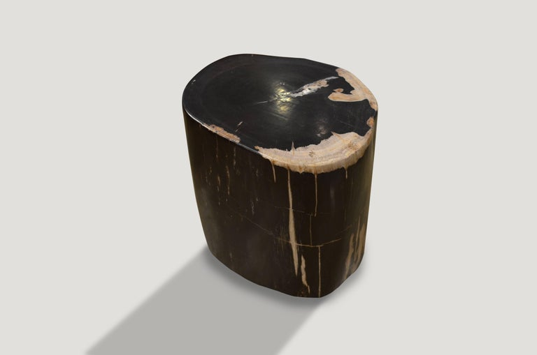 We source the highest quality petrified wood available. Each piece is hand selected and highly polished with minimal cracks. Petrified wood is extremely versatile – even great inside a bathroom shower. Perfect as a cocktail table, side table or