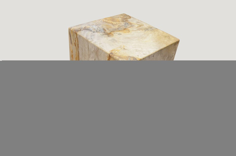 We source the highest quality petrified wood available. Each piece is hand selected and highly polished with minimal cracks. Petrified wood is extremely versatile even great inside a bathroom shower. Perfect as a cocktail table, side table or