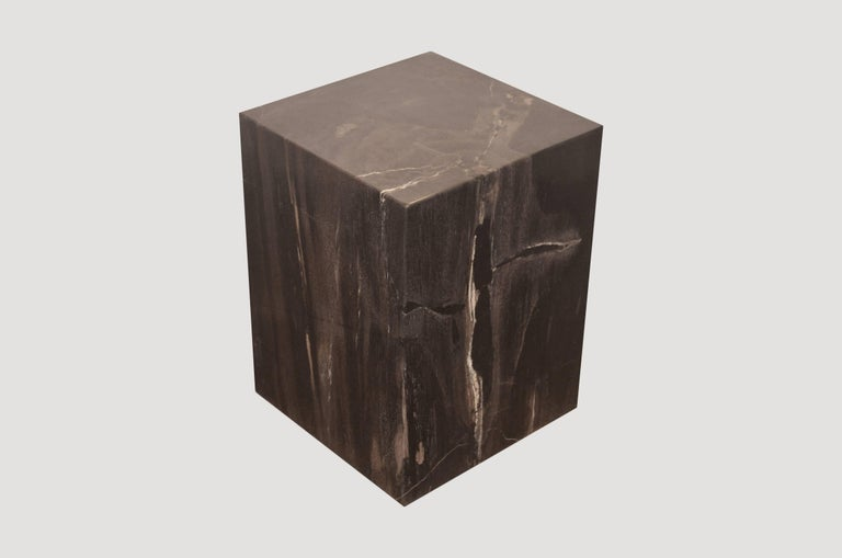 We source the highest quality petrified wood available. Each piece is hand-selected and highly polished with minimal cracks. Petrified wood is extremely versatile – even great inside a bathroom shower. Perfect as a cocktail table, side table or