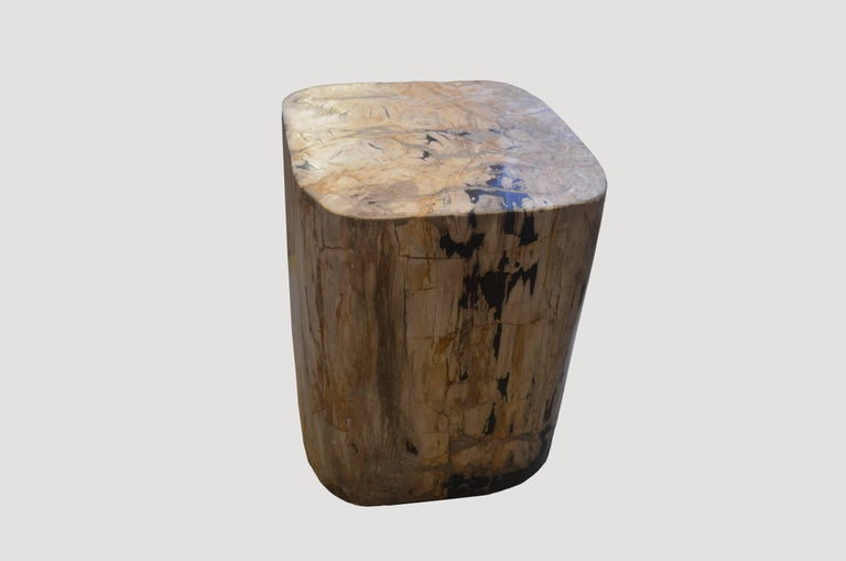 We source the highest quality petrified wood available. Each piece is hand-selected and highly polished with minimal cracks. Petrified wood is extremely versatile even great inside a bathroom shower. Perfect as a cocktail table, side table or