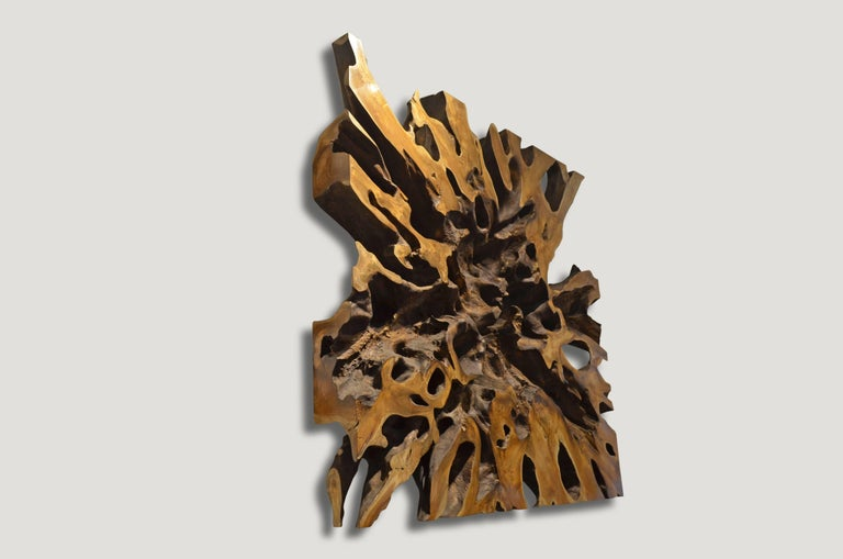 Impressive teak wood root art object. Carved from a single 6