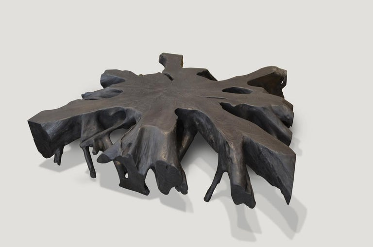 Impressive teak root art to hang on the wall or low Minimalist coffee table. hand-carved from a single 11? thick piece of reclaimed teak wood and burnt to achieve this stunning finish. Organic is the new modern.