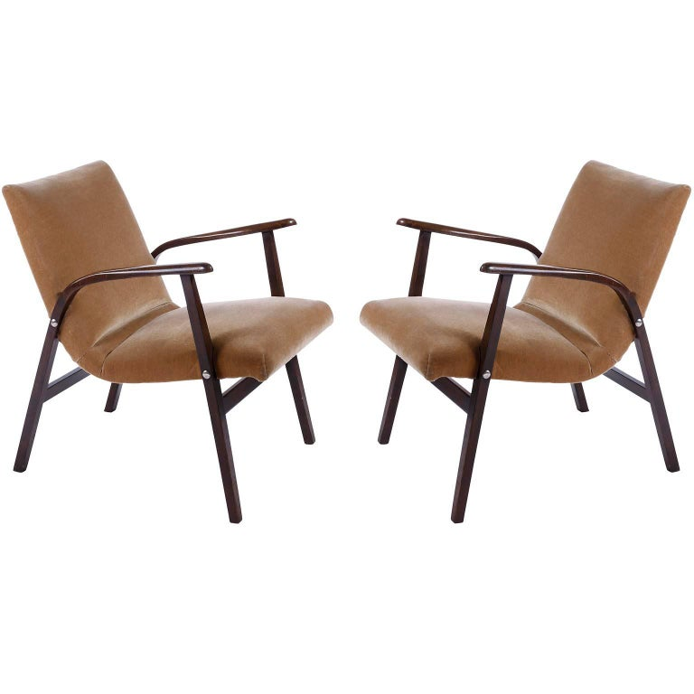 Roland Rainer Lounge Chair Armchair Cafe Ritter, Wood Newly Upholstered, 1950s For Sale 1