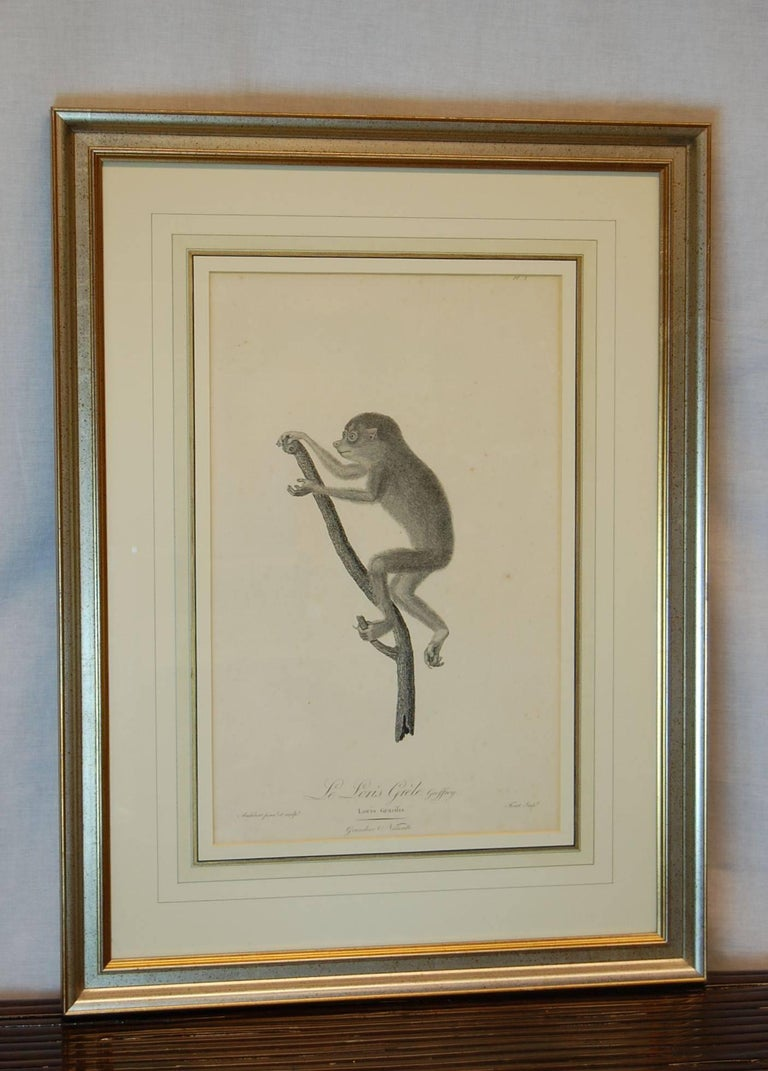 French Framed Late 18th/ 19th Century Print